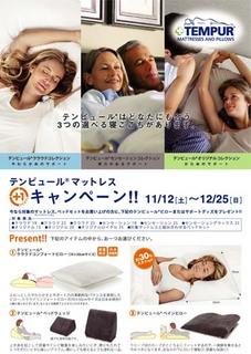 plus1_2011_main.jpg